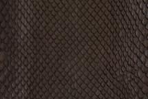 Anaconda Skin Glazed Brown
