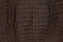 Caiman Skin Belly Matte Brown - XS