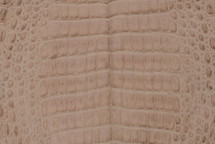 Caiman Skin Belly Matte Oryx - XS