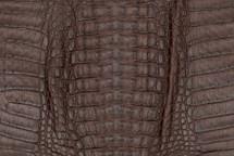 Caiman Skin Hornback Matte Brown - XS