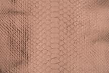 Python Skin Metallic Bronze