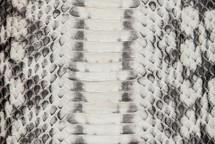 Copperhead Snakeskin Matte BC Natural
