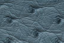 Ostrich Skin Blue Haze