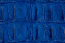 Alligator Backstrap Cobalt