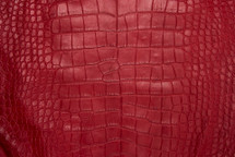 Alligator Skin Belly Matte Red 65+ cm Grade 4