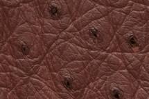 Ostrich Skin Matte Bordeaux