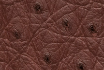 Ostrich Skin Bordeaux