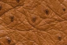 Ostrich Skin Matte Brandy