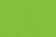 Lamb Skin Lime