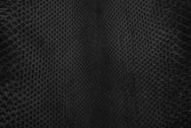Python Skin FC Suede Black