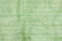 Eel Skin Panel Matte Pistacchio