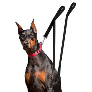 Dog Leash Dual Handle Black Nylon 2 Padded Handles Extra Long 8 ft Easy Control Actual Usage Photo