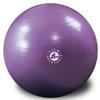 55cm Economy Gymball - Mulberry