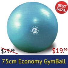 Exertools Economy Gym Ball