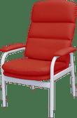 Bariatric Chair - BC2 Standard