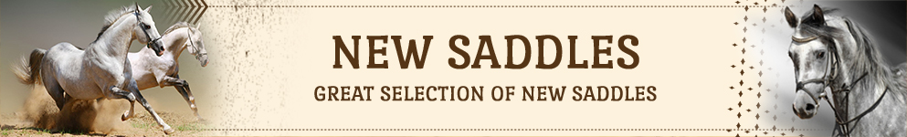 new-saddles-cat-banner.jpg