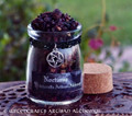 """NOCTURNE Old European """"Witch Walking"""" Incense w/ Inverted Pentacle"""