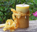 "ABUNDANTIA 14K Gold Plated Money Bags Charmed ""Old European Witchcraft"" Pillar Candle"