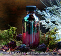 "WITCH'S BLACKBERRY BREW ""Signature"" Collection ""Artisan Alchemist"" Ritual Oil"