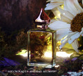 TEMPTATION Artisan Perfume Oil by Witchcrafts Artisan Alchemy