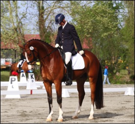 jules-nyssen-dressage-williamston-2014.jpg