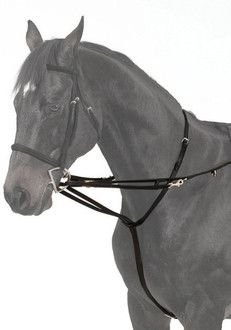 German Martingale in Black Leather