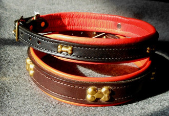 Dog Collar with Brass Bone Embellishments