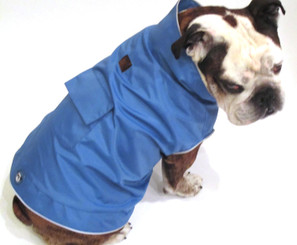 Cool Blue Raincoat