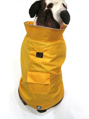 Mellow Yellow Raincoat (Back)