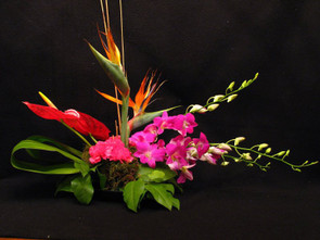 The Exotic Design - Flower Store Lake Forest IL - Jan Channon Flowers