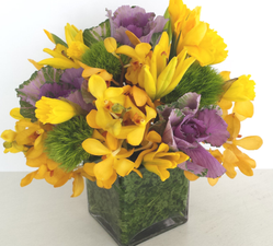 Spring Holiday - Best Flower Delivery Northbrook IL - Jan Channon Flowers