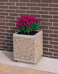 Outdoor Square Concrete Planter TF4185 with Flowers Exposed Aggregate Tan