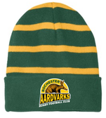 Rochester Aardvarks Fleece Lined Stripe Beanie