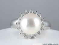 Diamond & Pearl Ring, in 14k White Gold
