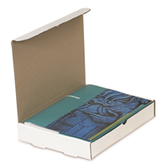 "Protective Literature Mailers BSMIBM1M 7 1/2 x 7 x 3 1/4"" P"