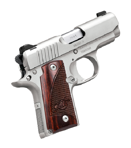 kimber-micro-9-stainless.png