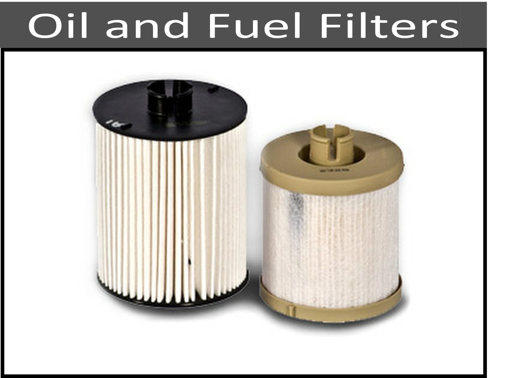 Oil and Fuel Filters