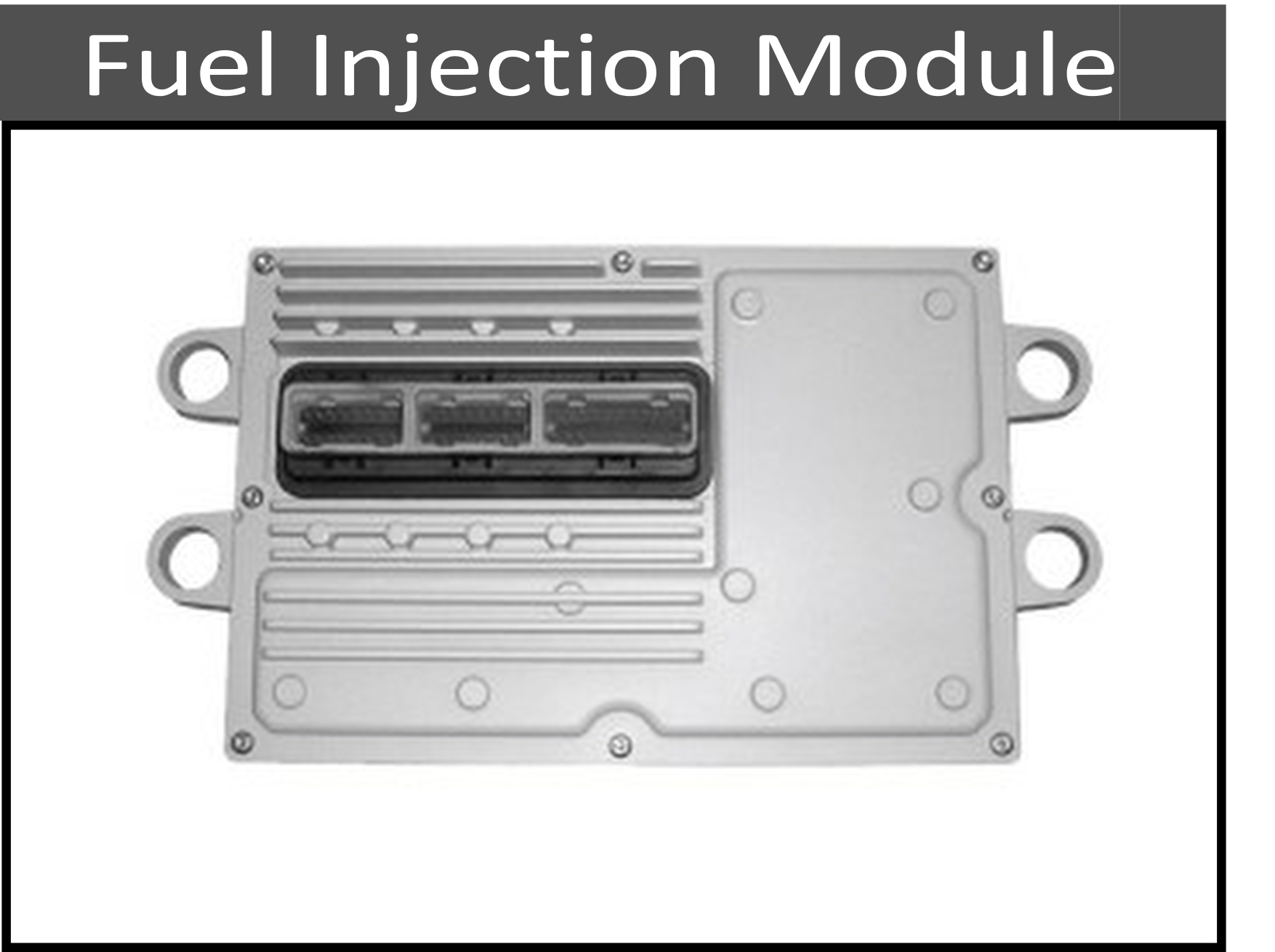 Fuel Injection Control Modules