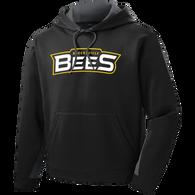 Brecksville Bees Baseball Colorblock Hoodie