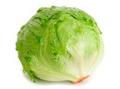 Iceberg Lettuce Seeds (Head)