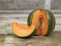 Petit Gris de Rennes Melon Seeds