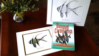 Banggai Cardinalfish Book & Print Introductory Offer