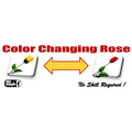 Color Changing Rose Magic Trick by Mr. Magic