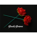 Flash Flower (2 pack) - by GD Wu & Gtmagicstore