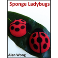 Sponge Lady Bugs by Alan Wong