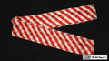 6 Inch by 18 Feet Production Streamer (Red and White Zebra)