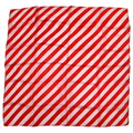 "24"" Red and White Zebra Silk by Uday Magic"