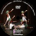 Sawnee School of Ballet 2014 Recital : Sat 5/31/2014 1:00 pm DVD