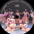 2014 Recital and Coppelia: Lilburn Recital Sunday 5/18/2014 11:00 am Blu-ray