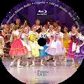 2014 Recital and Coppelia: NEAB Coppelia Sunday 5/18/2014 3:00 pm Blu-ray